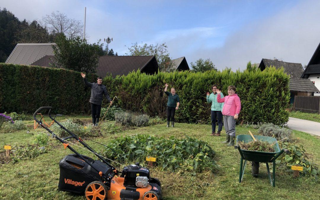 Urejanje zeliščnega vrta v Brodeh