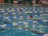 DP v plavanju